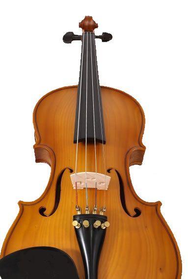 Violino Nhureson 4/4 Série Especial - Com Estojo, Arco e Breu   - Luggi Instrumentos Musicais