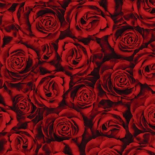 Saco de Presente Metalizado - Rosas Vermelhas 25x37 (50 unidades)