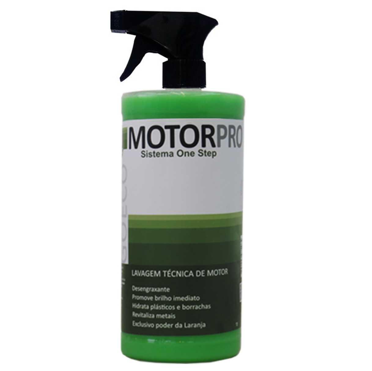 MotorPro - Lavagem Técnica de motor  1Lt  (Go Eco Wash)  - Loja Go Eco Wash