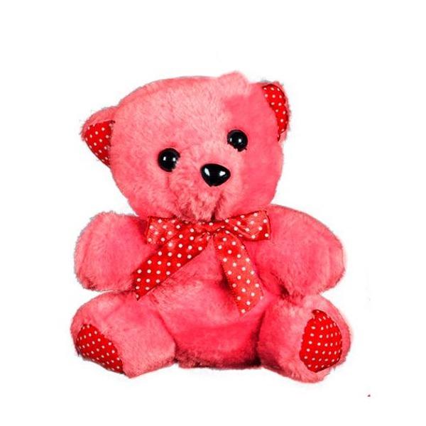 Urso De Pelúcia Colorido
