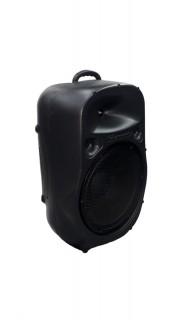 Caixa Acústica Supertech Pe15 Turbinada Falante 15.7 Passiva 439wref