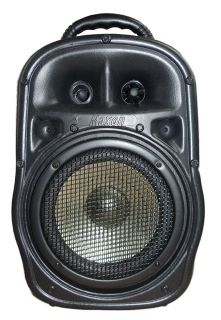 Caixa Ativa Maxon PE8 243WR 3 Canais. Controle Remoto C.Blu/Usb/Sd/Fm