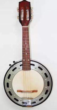Banjo Passion Eletrico 2 Controles Sumburst