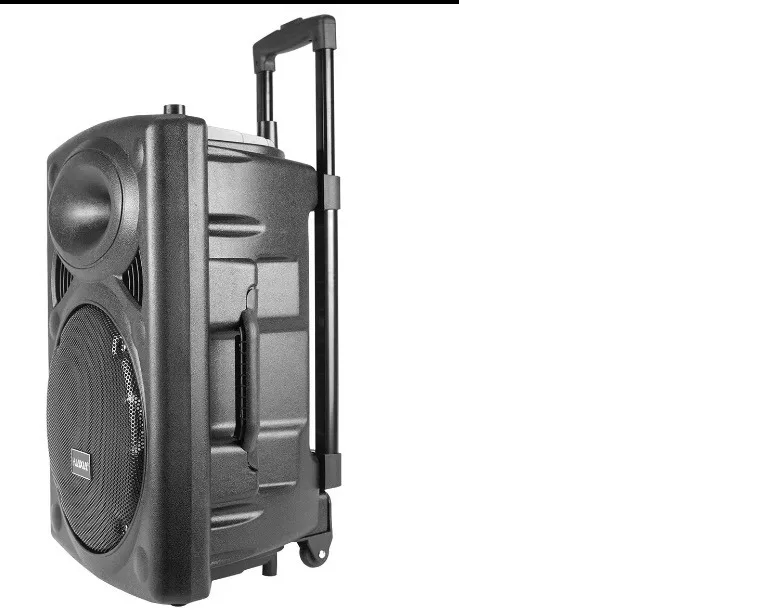 Caixa Amplificada Huaxia Bateria Recarregável Usb Bluetooth Mic S/fio