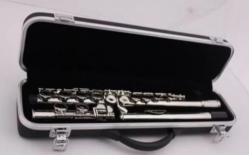 Flauta Tranversal Benson Bfts Do Prateada