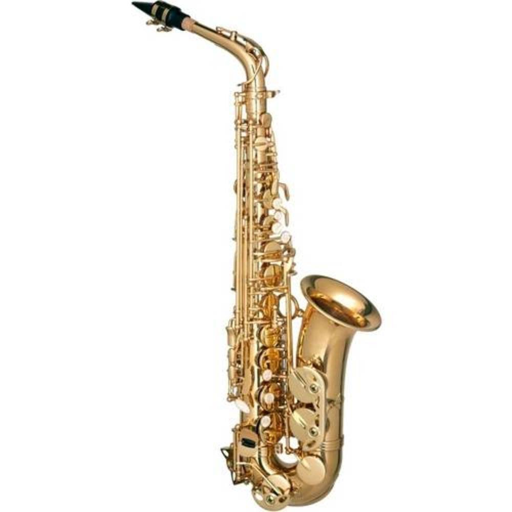Saxofone Alto Hofma HSA 400 GLQ Com Estojo