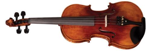 Violino Eagle Vk644 4/4 Rajado Prof.C/Higrometro E Espaleira Completo