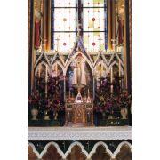 Cartão Postal Basílica Nossa Senhora do Rosário - 1