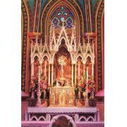 Cartão Postal Basílica Nossa Senhora do Rosário - 2