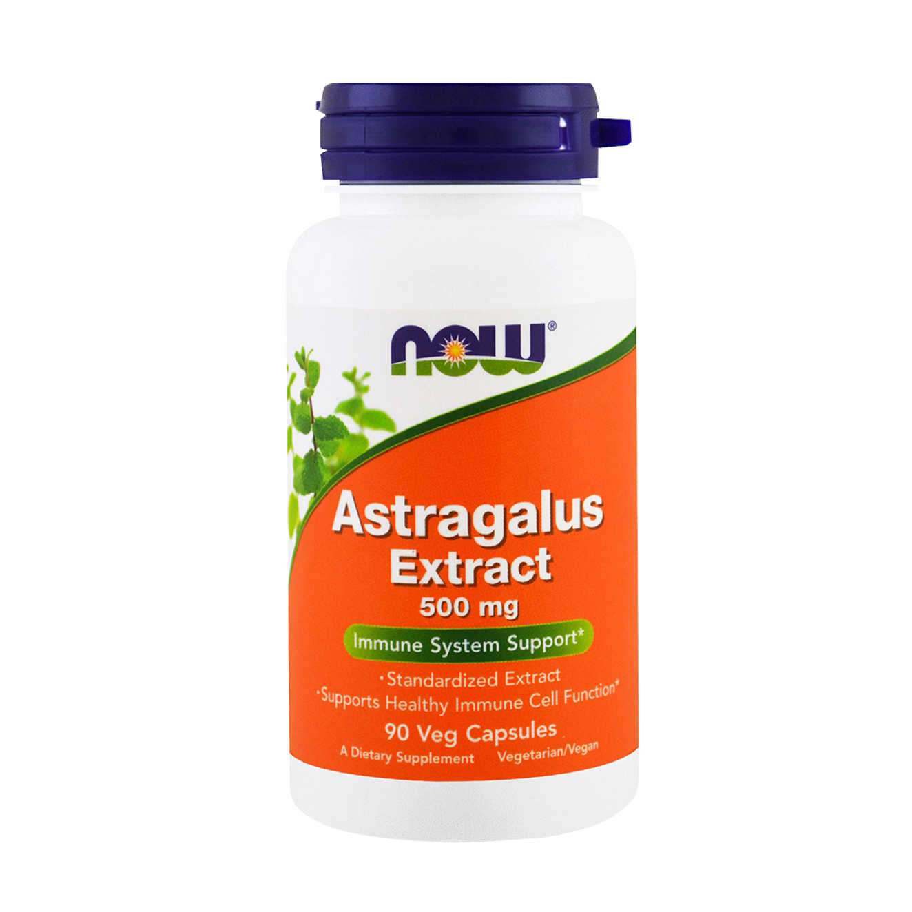 Astragalus Extract 500mg (90 capsulas) Now  - Nature Net