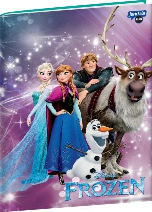 Caderno Brochura Universitário Frozen Magic Turma Jandaia