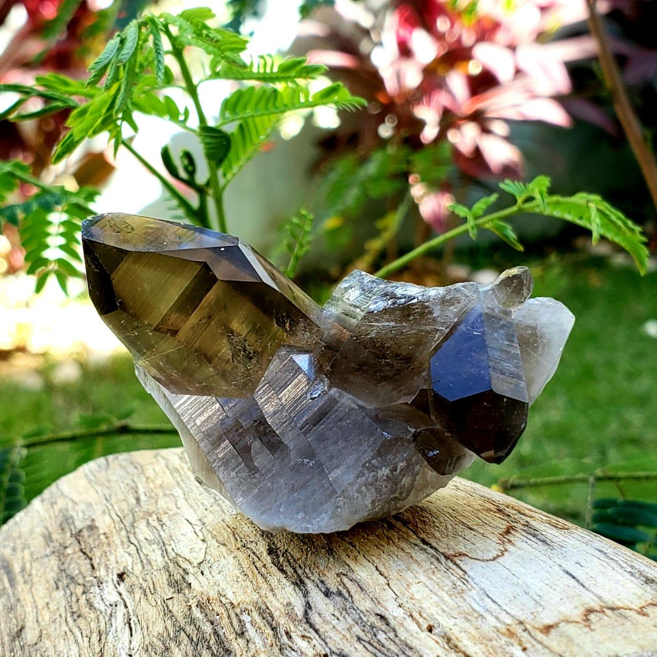 Cristal de Rocha -  Quartzo Fumê