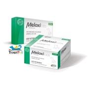 Meloxitabs 2,0 mg - Anti-inflamatório não esteróide palatável para Cães a base de Meloxicam - Biovet (10 comprimidos)