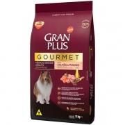 Ração Gran Plus Gourmet Cães Adultos Raças Médias e Grandes Salmão e Frango (15kg) - Affinity Guabi
