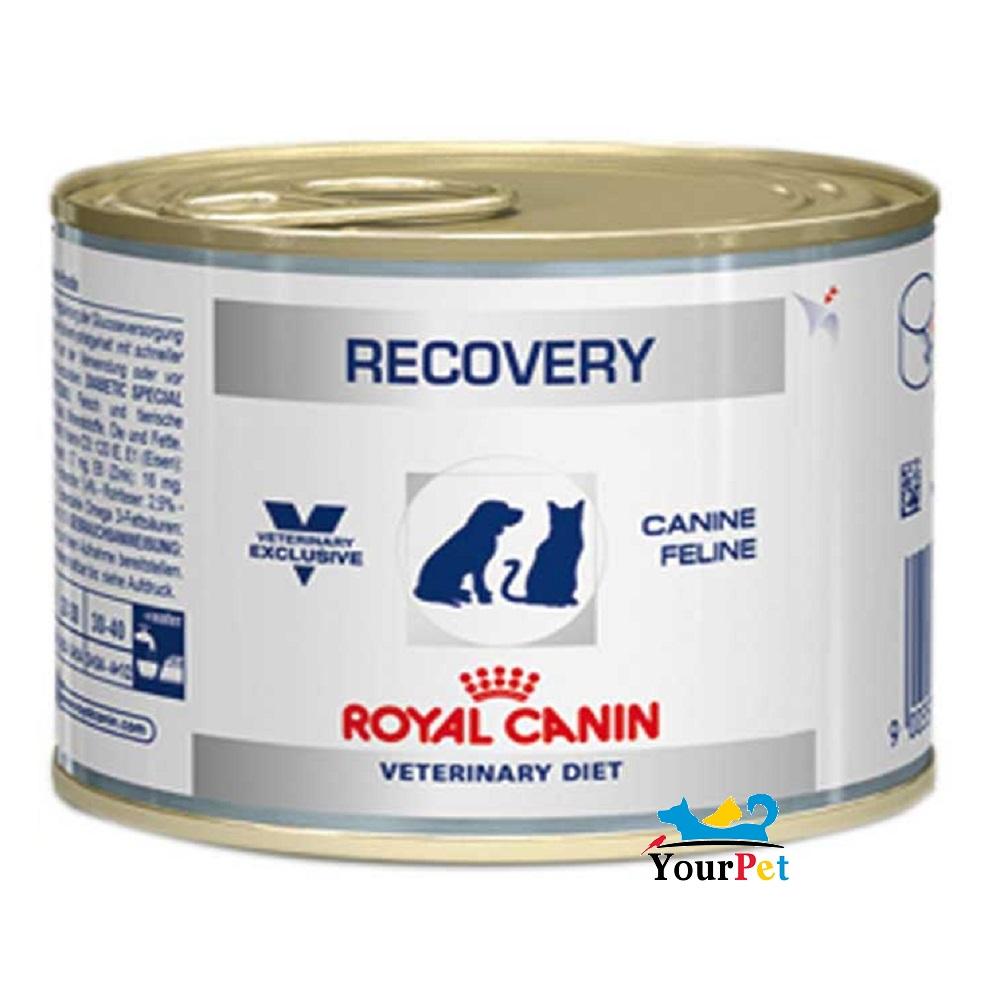 Alimento úmido Royal Canin Recovery wet para Cães e Gatos  (195g)