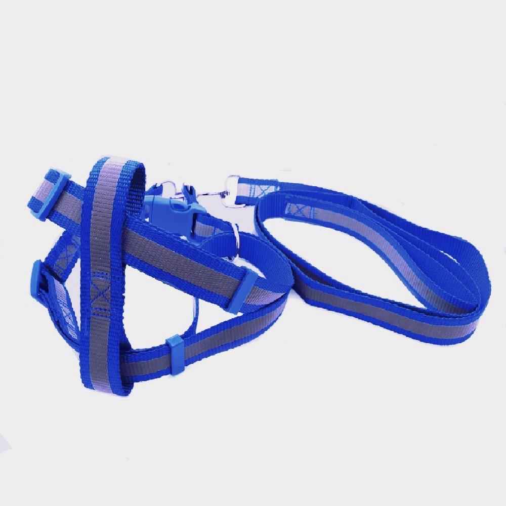 Conjunto guia peitoral refletiva - Cães M (Azul) - Bom Amigo