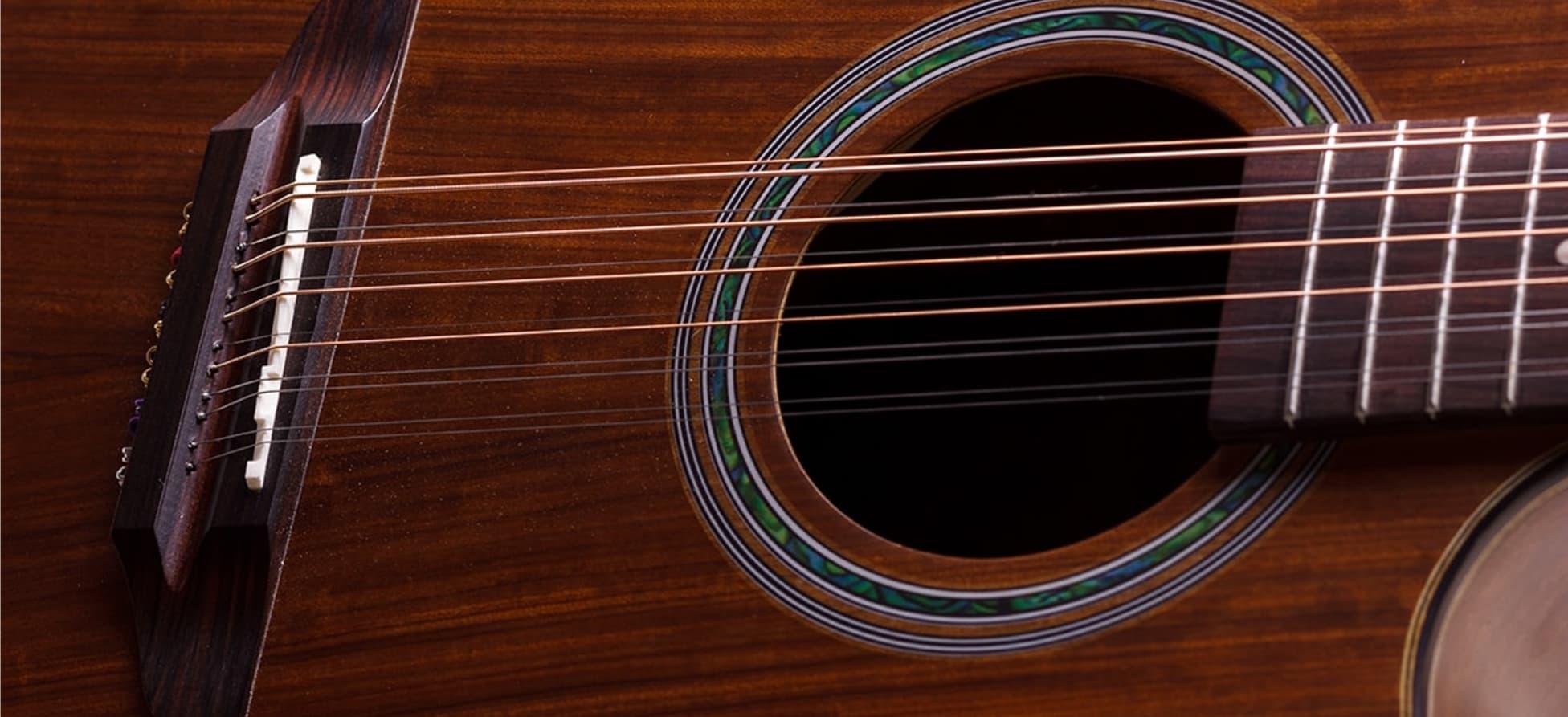Violao Rozini Rx415 At Presença Brasil Folk 12 Cordas Elétrico