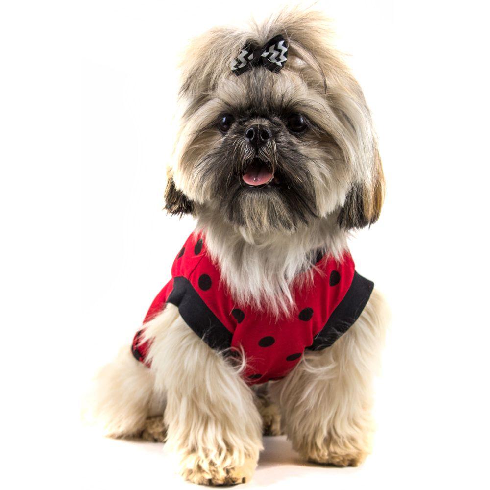 9a534998a5 Camiseta Roupinha Pet Regata Bolinhas para Cachorro e Gato - Senhor Bicho  Store ...