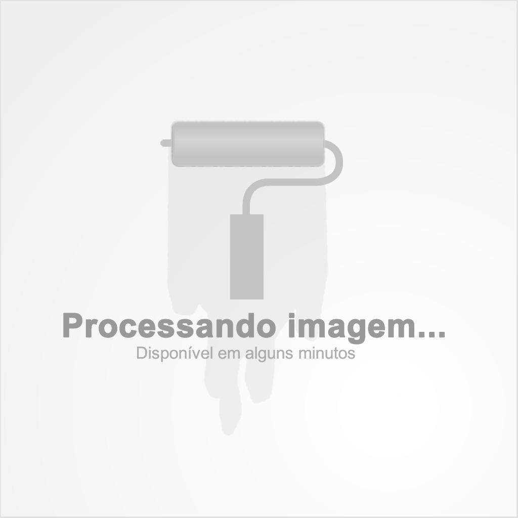 Parafuso Chipboard Cabeça Chata 4,0 X 50 500 Peças