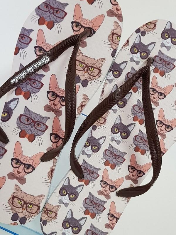 Gatinhos de óculos