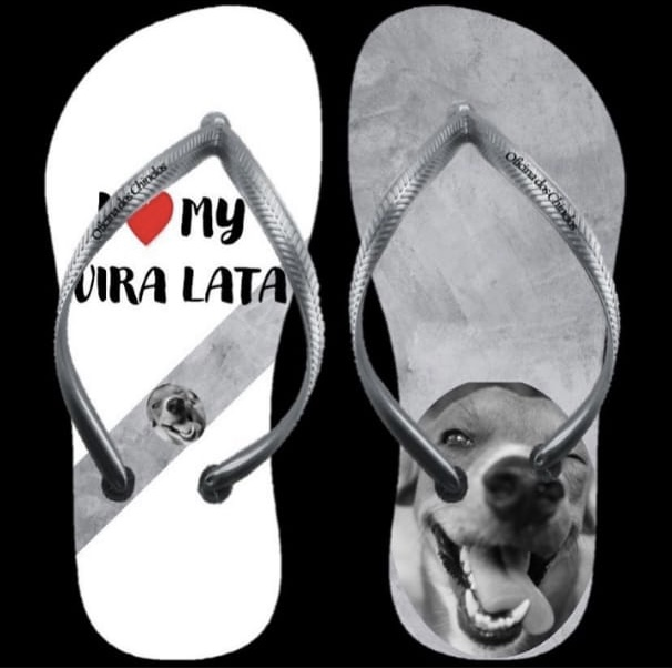 I love my pet 2 - Viralata