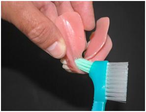 Escova para Limpeza de Prótese