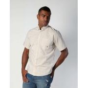 Camisa Masculina TXC Brand 2495C