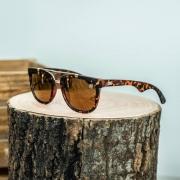 Óculos de Sol TXC Brand 540817