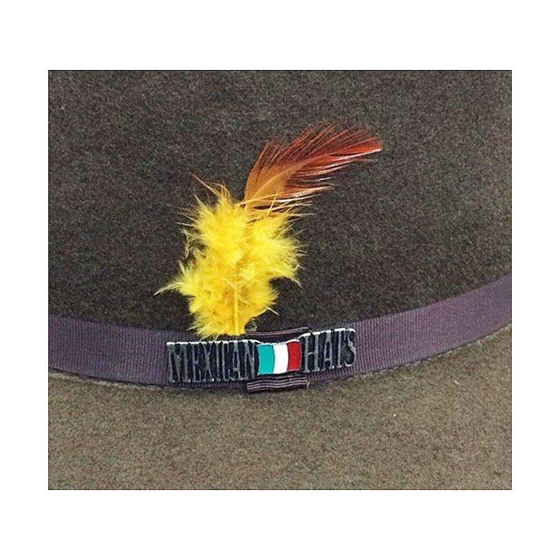 Chapéu Mexican Hats Monterrey Com Viés Café 412