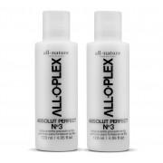 Alloplex Passo 3 Absolut Perfect 120 ml Tratamento Para Cabelos que Passaram Descoloração Tinturas e Outros Procedimentos Químicos 2 Unidades - All Nature