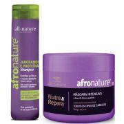 Shampoo de Jaborandi 300ml e  Máscara Intensiva 500g Afro Nature - All Nature