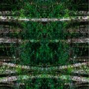 Quadro Collage25 60x60cm - Gisele Faria (A)