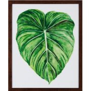 QUADRO TROPICAL BREEZE 53X43X3CM (A)