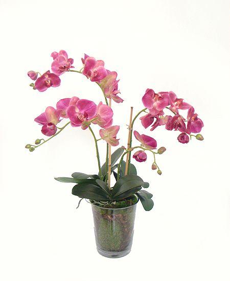Orquídea Phalaen Fucsia x3 com Vaso de Vidro (A)