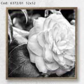 Quadro Floral 6372/01 52x52cm (A)