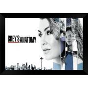 Quadro Decorativo Grey's Anatomy MDF 50 x 35 S041