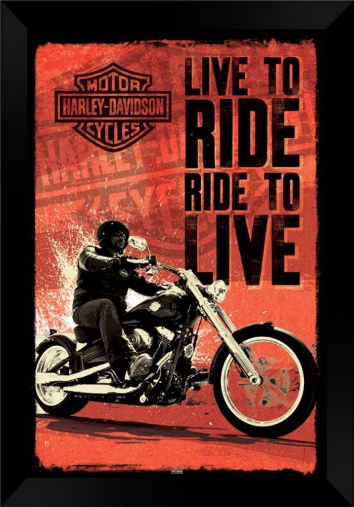 Quadro Decorativo Moto Harley MDF 50 x 35 C028