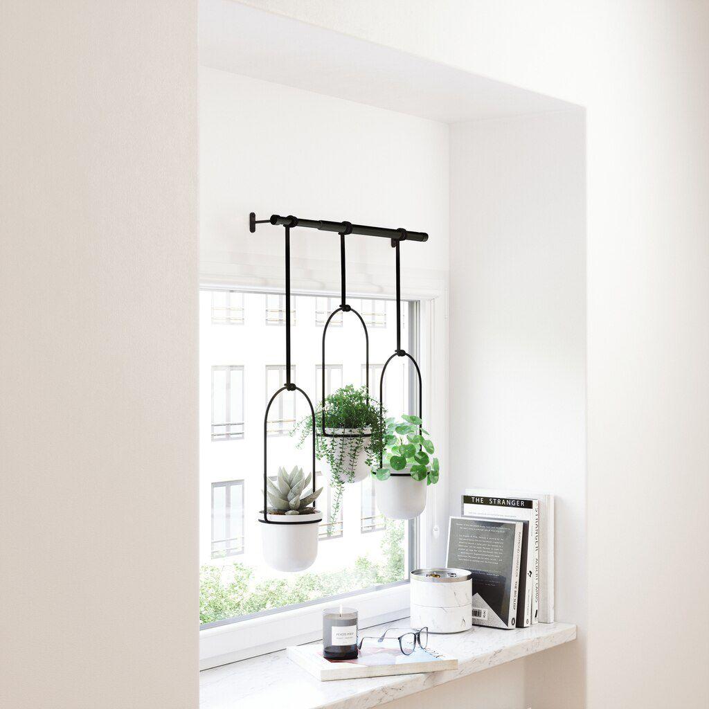 Conjunto (3 un ) Vasos de Suspensão Triflora - Umbra
