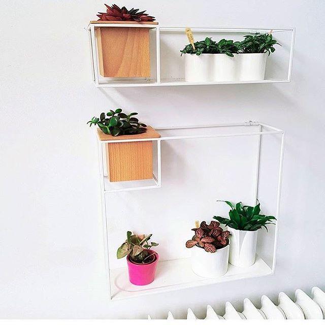 Prateleira Cubist com Vaso Médio - Umbra