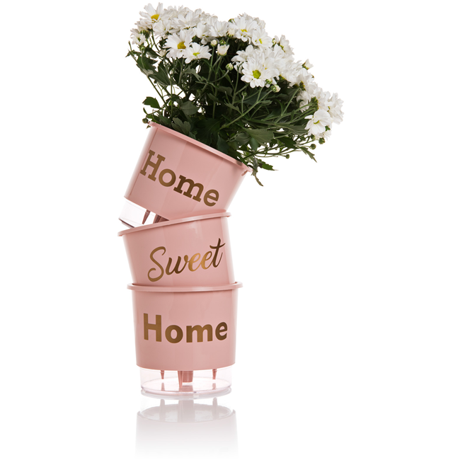 "Kit 3 Vasos Auto Irrigável ""Home Sweet Home"" - Rosa"