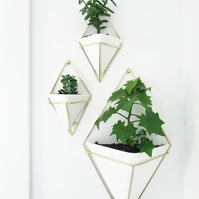 Vaso de parede Trigg (2 un) pequeno Branco - UMBRA