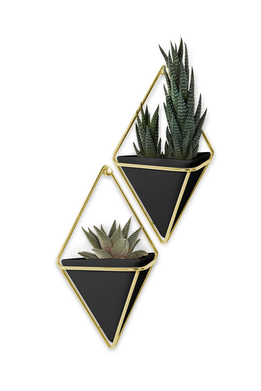 Vaso de Parede Trigg (2 un) Pequeno Preto / Dourado - Umbra