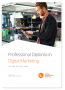 Curso Professional Diploma Digital Marketing