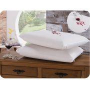 10 Protetor de Travesseiros Impermeável