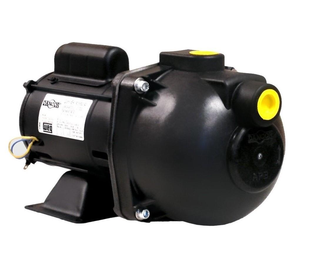 Bomba Auto Aspirante 1/2 CV Mono 127/220V AP-3C - Dancor