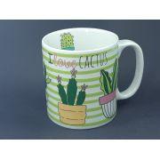 Kit Cactus em Promoção