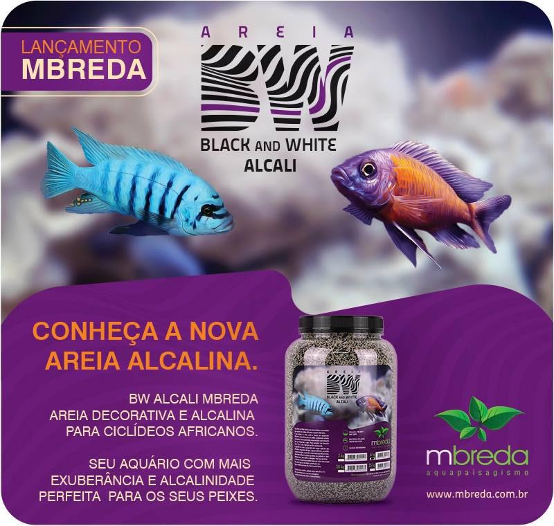 AREIA BW BLACK AND WHITE ALCALI MBREDA - 20 Kg