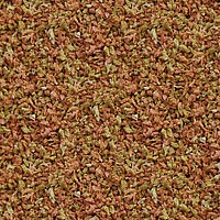 RAÇÃO SERA VIPAGRAN - Pote 30 gr