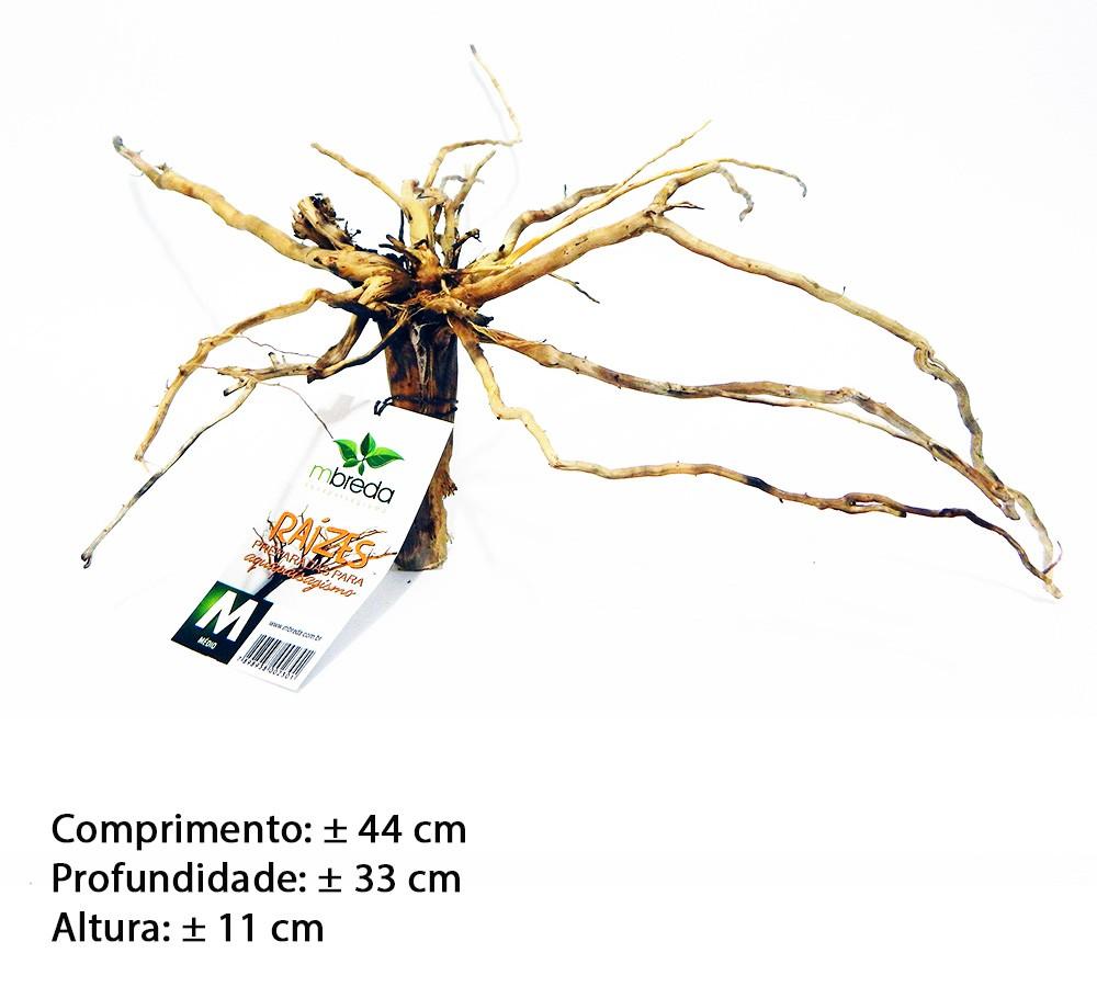 RAIZ NATURAL MBreda para decoração em aquários - Tamanho M-03