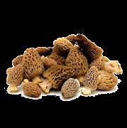 Funghi Morilles Savitar 250gr